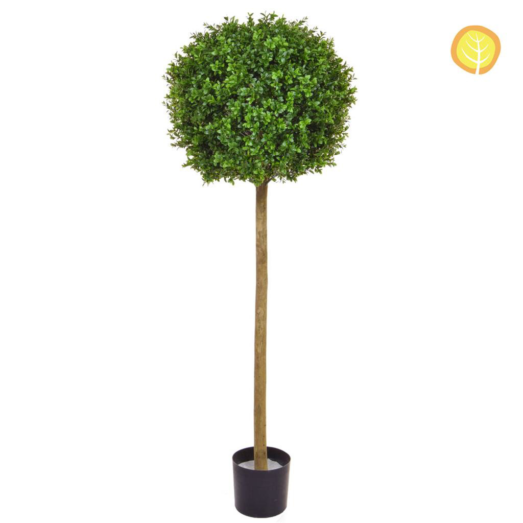 Topiary New Buxus Ball Tree 120cm UV