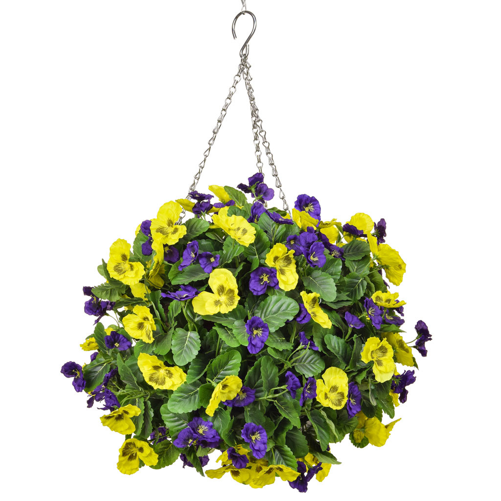 HB Pansy Medium Ball Purple Yellow 30cm