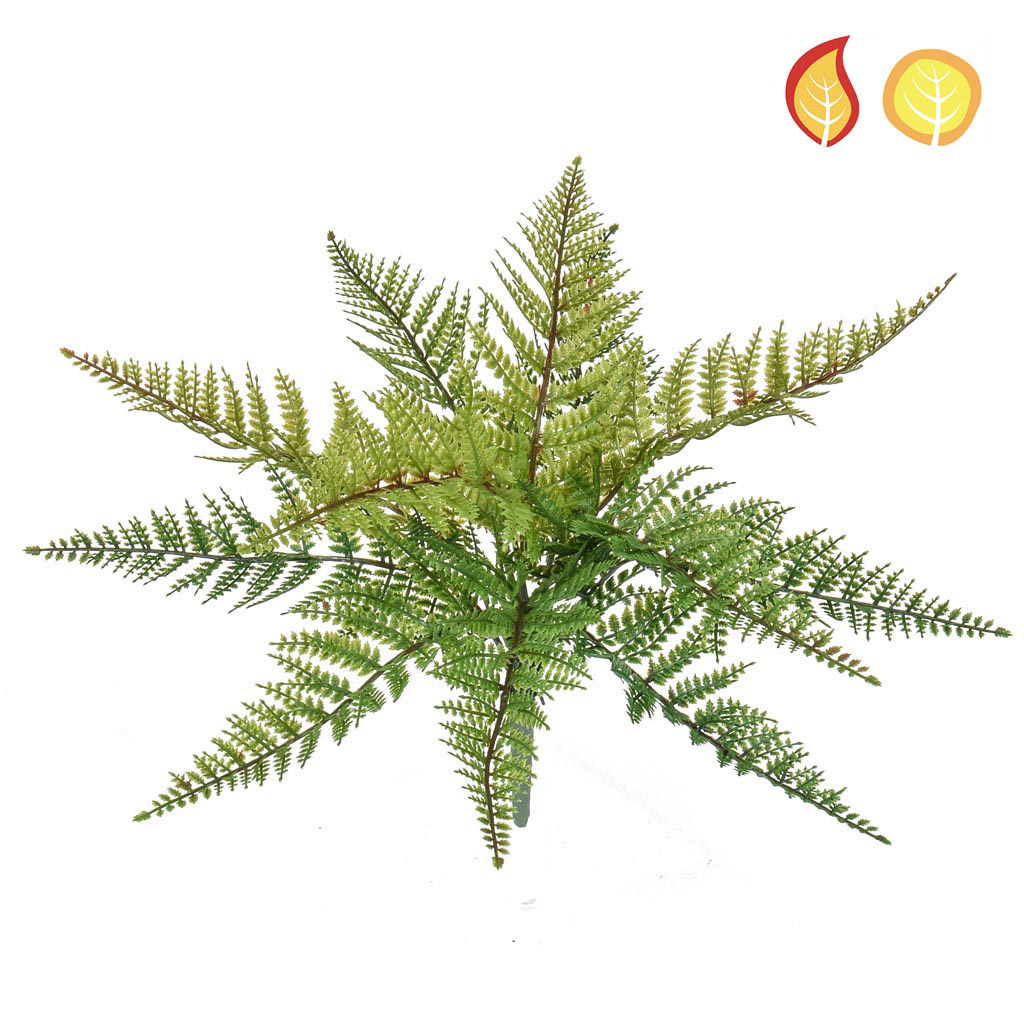 Plants Base Fern Leather SF 36cm UVFR