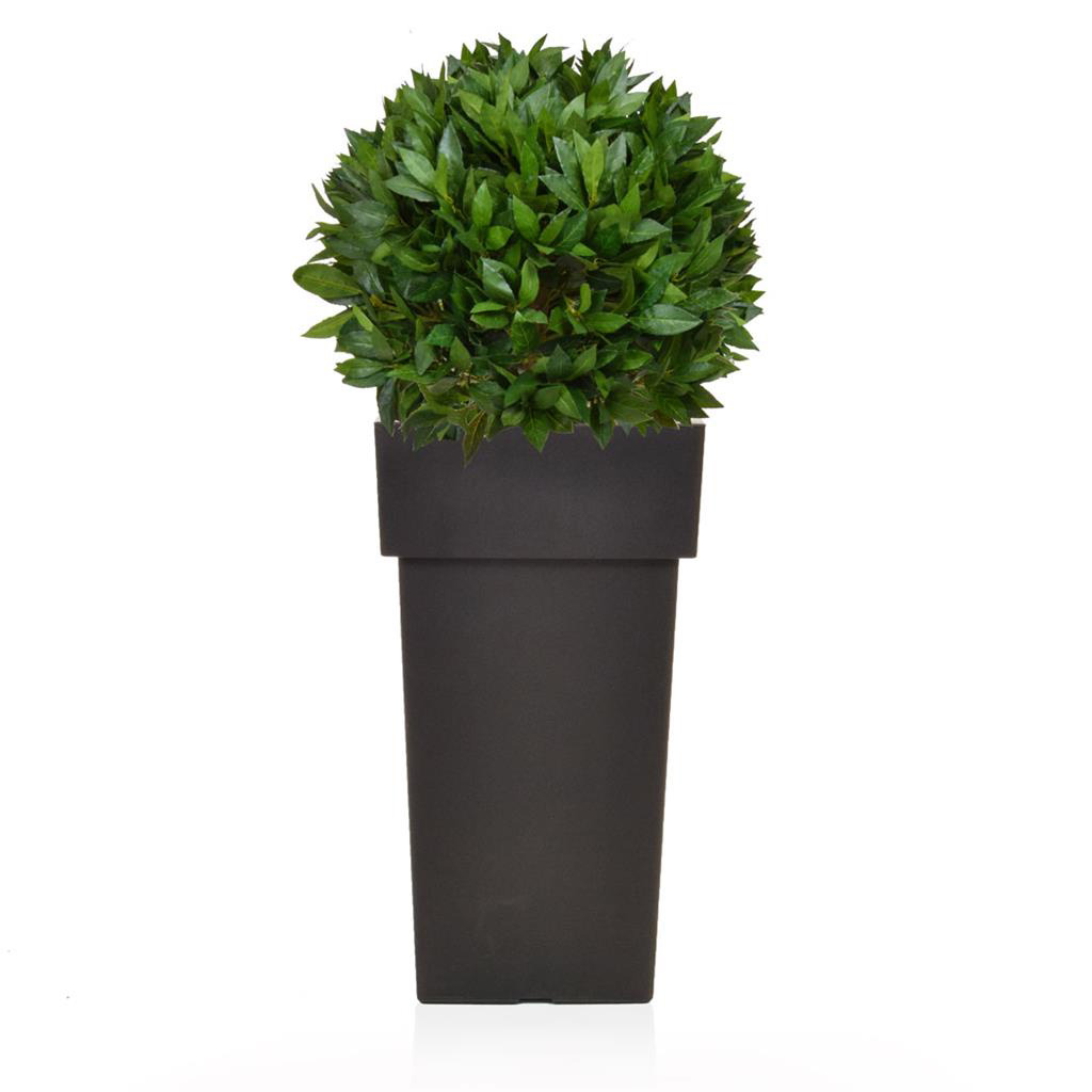 AN-Linea Black Bay Laurel Ball 86cm