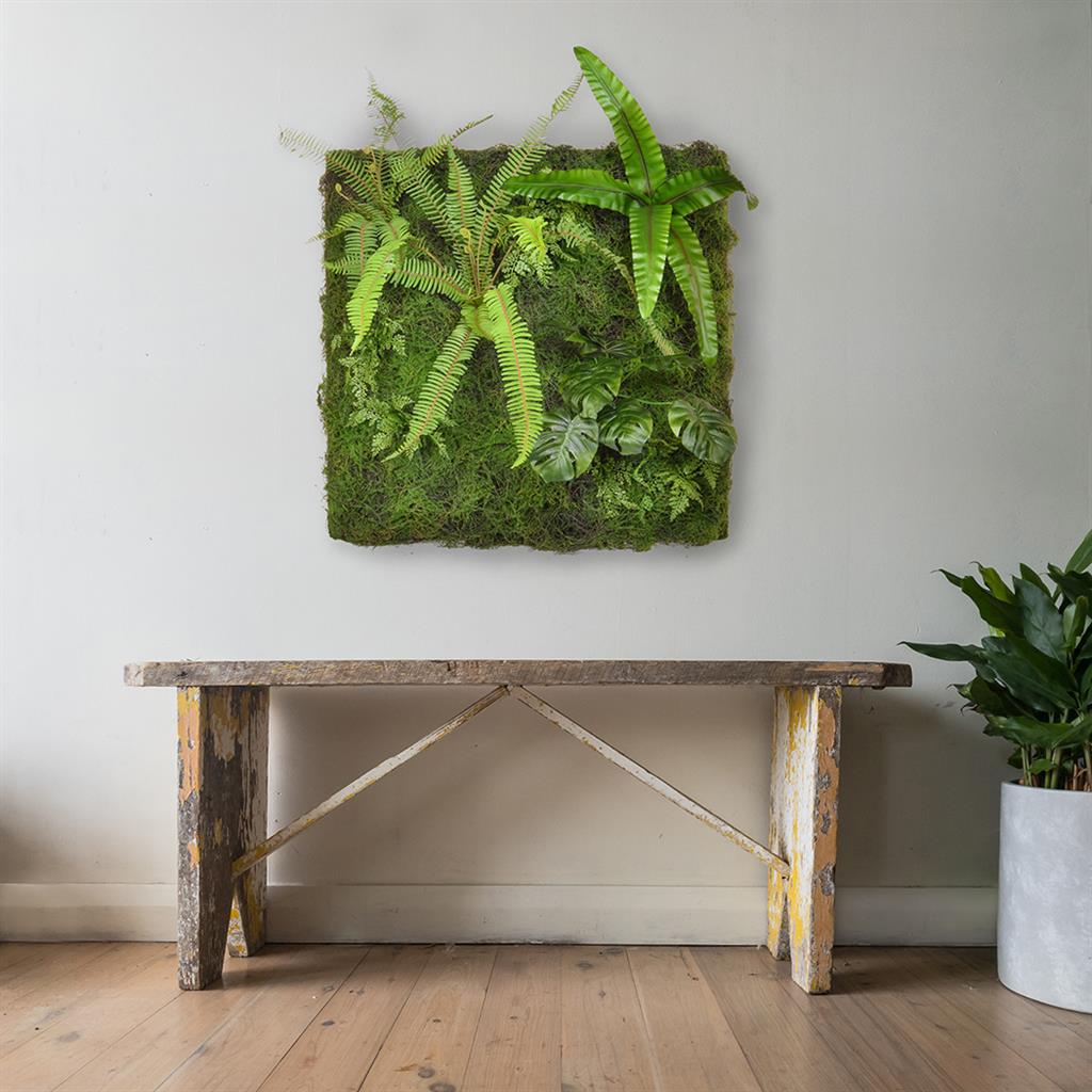 Greenwall Tropical Monstera 100x100cm