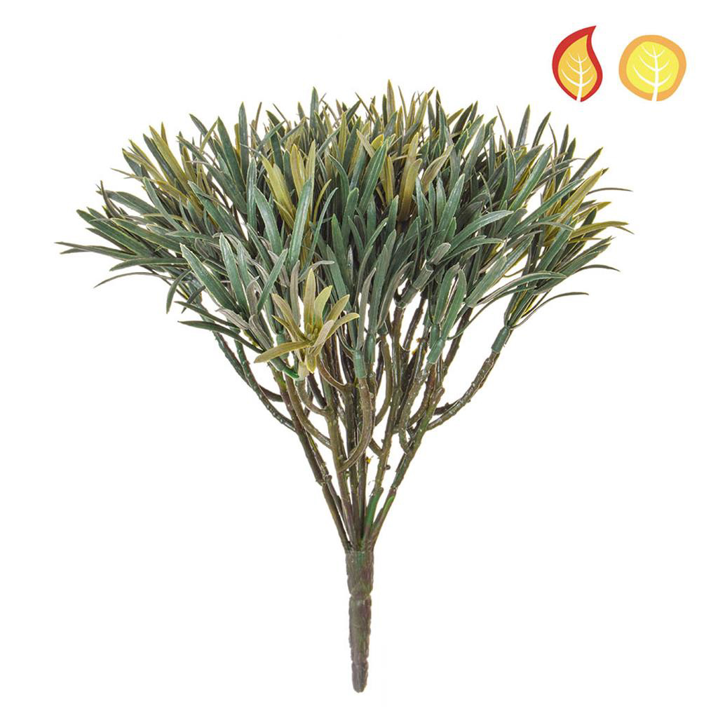 Plants Base Podocarpus Green PI 20cm FR UV