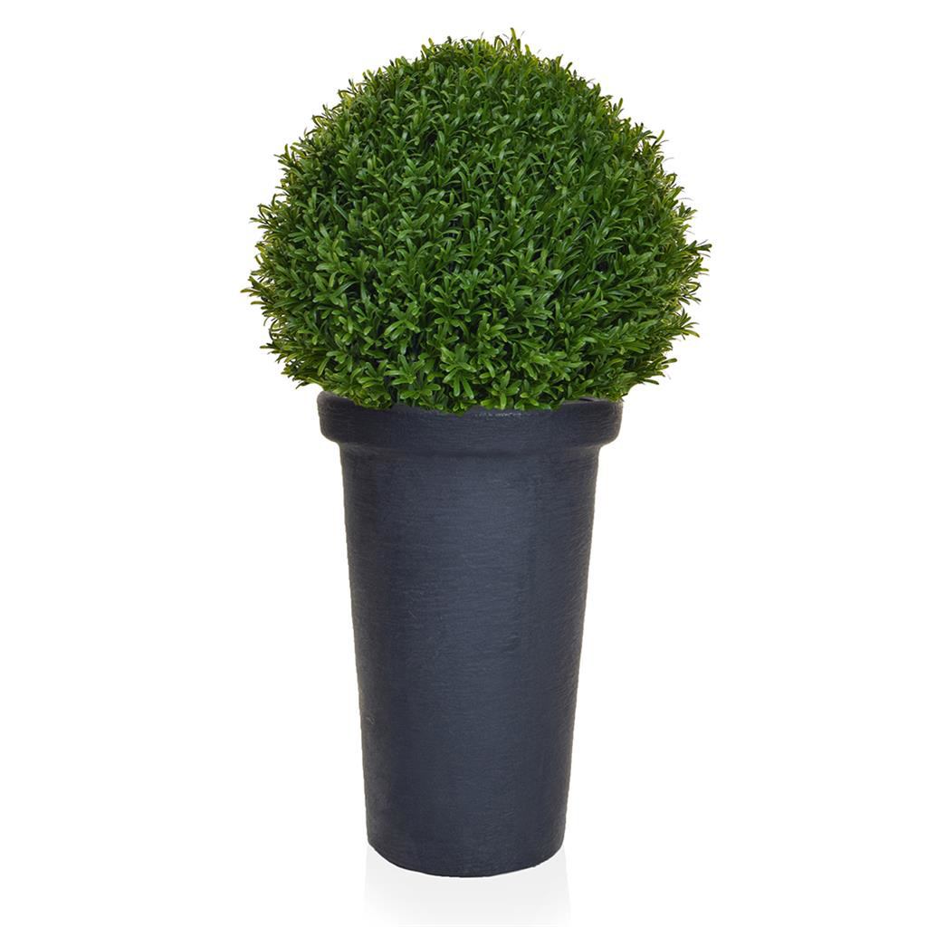 AN-Topiary Rosemary Ball in Classic Pot 80cm