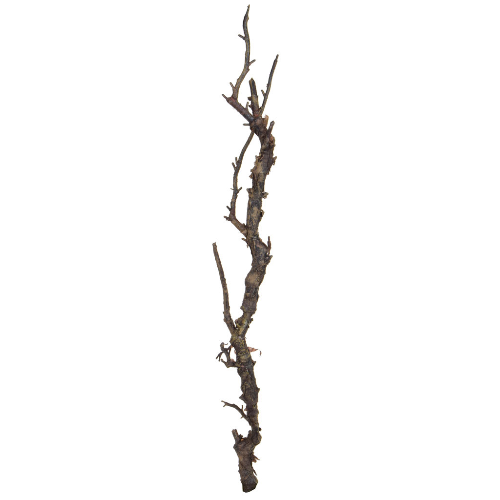 Foliage K Wood Brown 70cm