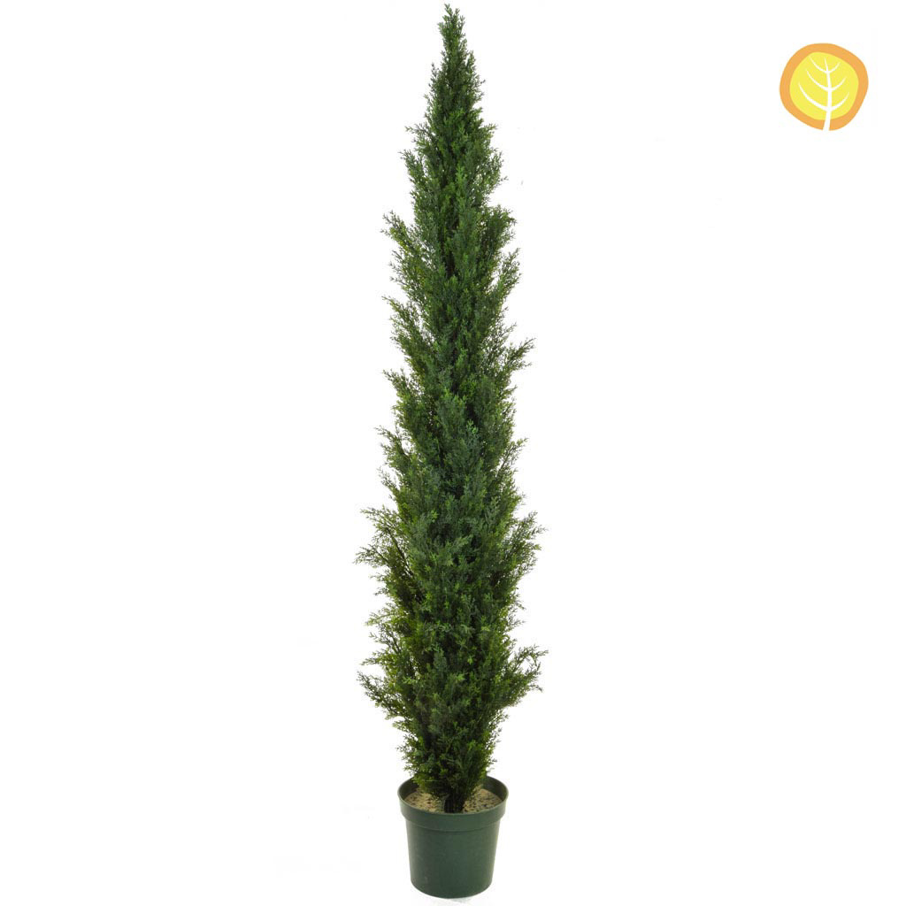 Topiary Cedar Mini Pine SF 210cm UV