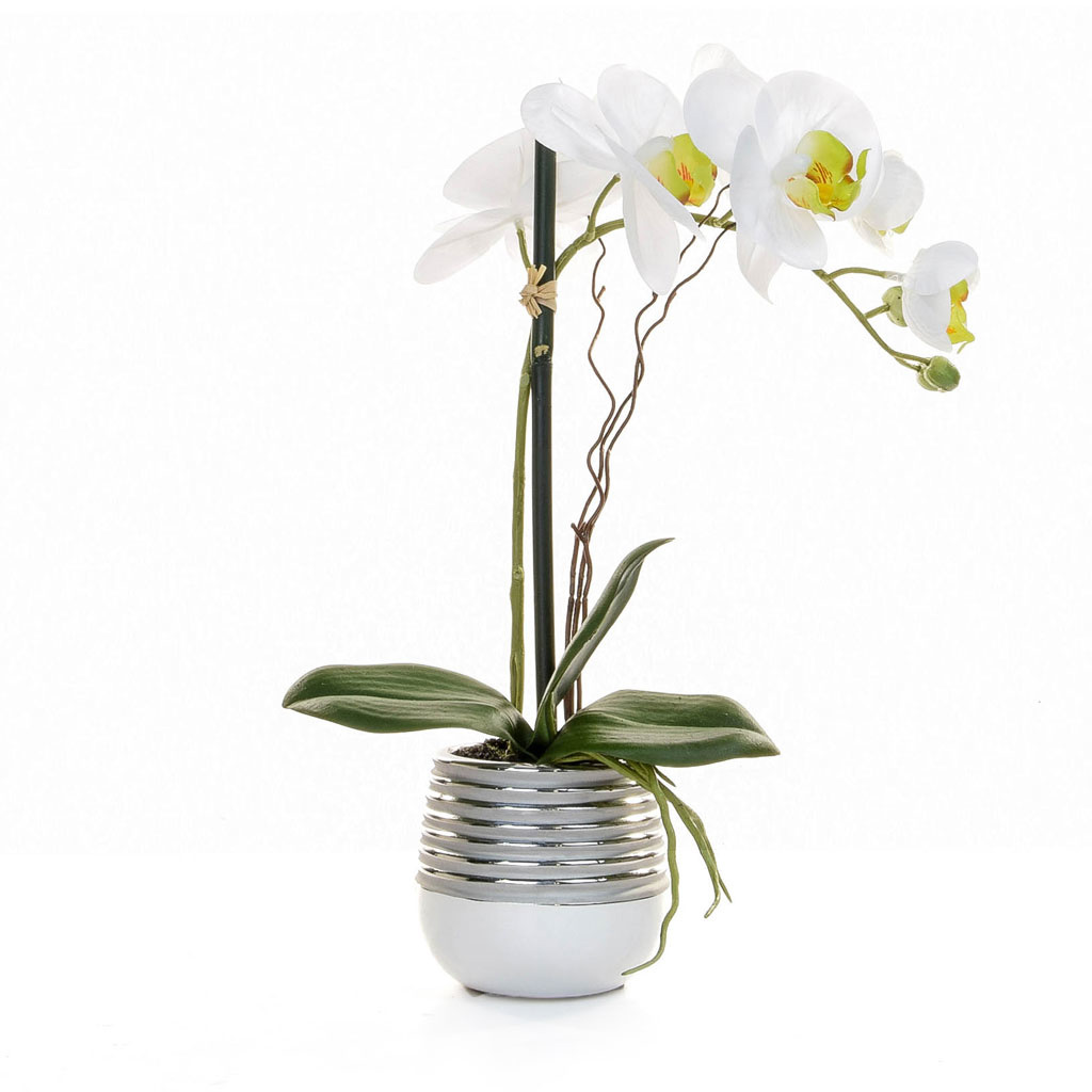 PP Potted Orchid white slv YA 38cm