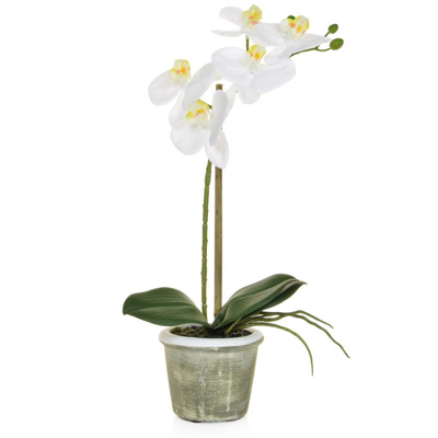 PP Phal Real Touch White W/pot  35cm
