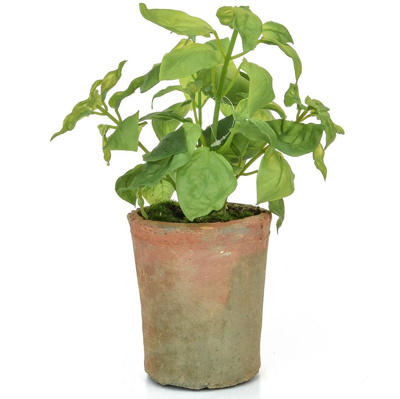 PP Potted Herb Basil GB Green 28cm