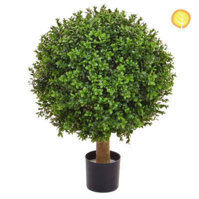 Topiary Buxus Ball 40cm