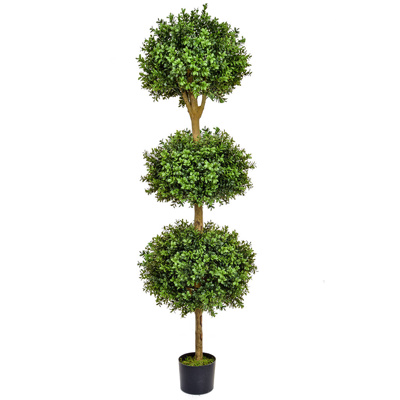 Topiary Buxus Ball Tree BA 180cm