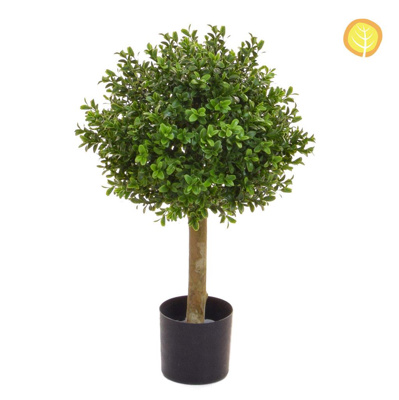Topiary Buxus Ball 30cm