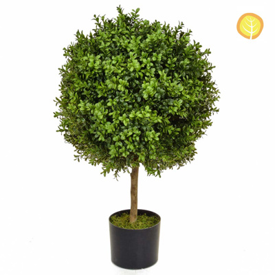 Topiary Buxus 50 Ball 70cm BA