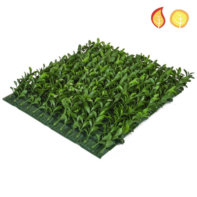 Topiary Mat Bux Side 25z25cm Sq FR UV