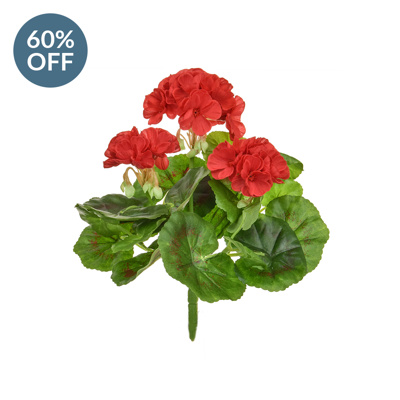 Plants Flowering Geranium A Red 23cm