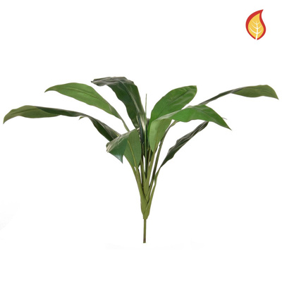 Foliage Cordyline Green 74cm FR