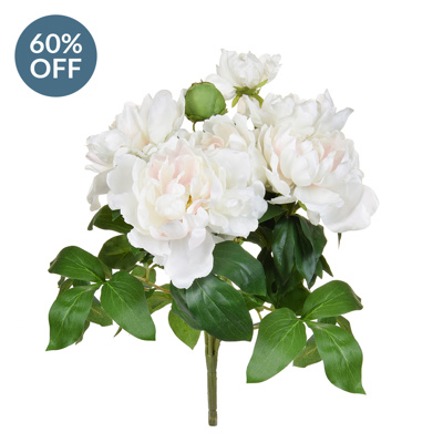 Plants Flwing Peony White/Pink GB 49.5cm