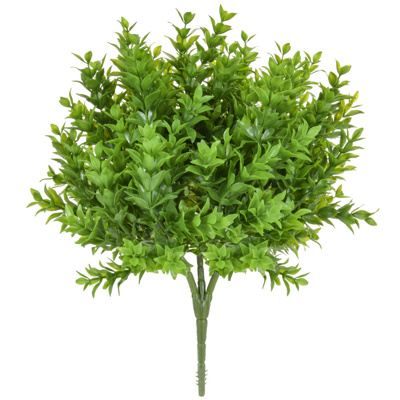 Plants Base Bush Green Buxus Bush 35cm
