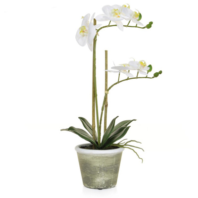 PP Phal Real Touch White W/pot  50cm