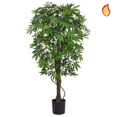 NTT Maple Japanese Green 120cm FR