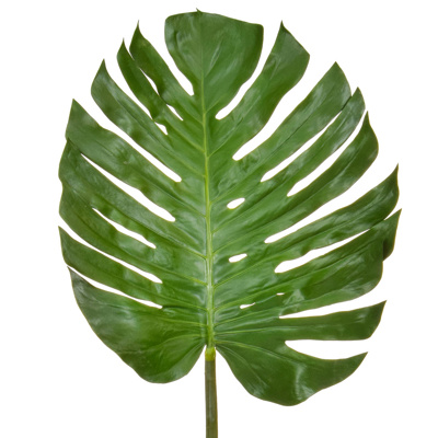 SF Leaf Monstera JA 137cm