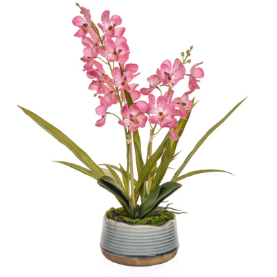 AN-Vanda Orchid Pink in Pot YA 57cm