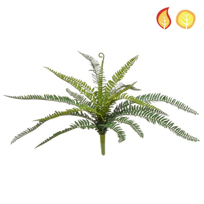Plants Base Boston Fern SF 52cm FR UV