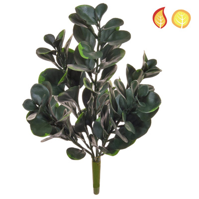Plants Base Money Leaf SF 45cm FR UV