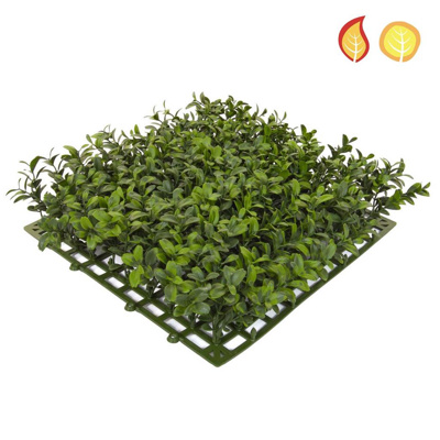 Topiary Mat Bux Top 25x25cm FR UV