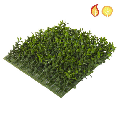 Topiary Mat Bux Side 25x25cm FR UV