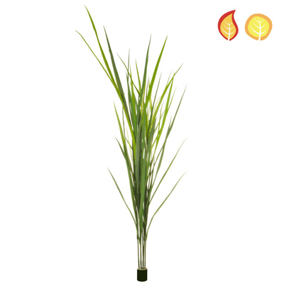 Grass Reed 180cm FR UV