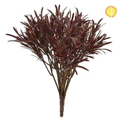 Plants Base Podocarpus Brown 30cm UV