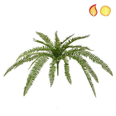 Plants Boston Fern 70cm PI FR UV