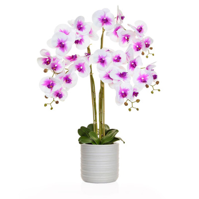 AN- Pk/Wh Orchid in Athens Pot 85cm