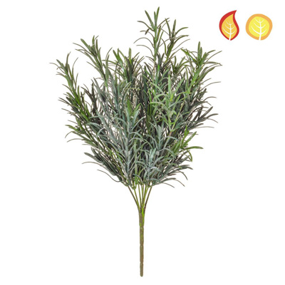 Plants Base Podocarpus Grey PI 30cm FR UV