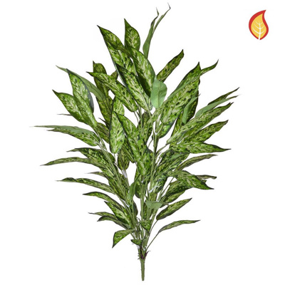 Plants Aglaonema Bush Variegated 85cm SF FR