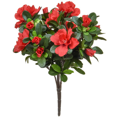 Plants Flowering Azalea Bush Red Blk 38cm