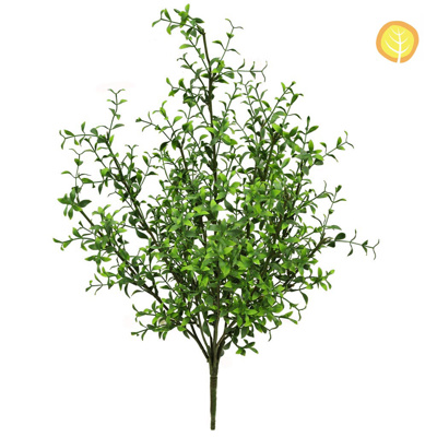 Plants Base Boxwood Twiggy Grn 58cm UV