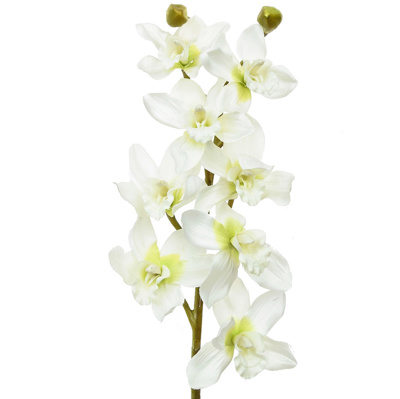 SF Orchid Cymbidium NG White Green 97cm