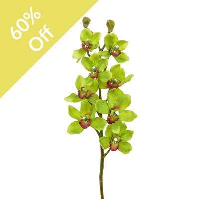 SF Orchid Cymbidium NG Green Red 97cm