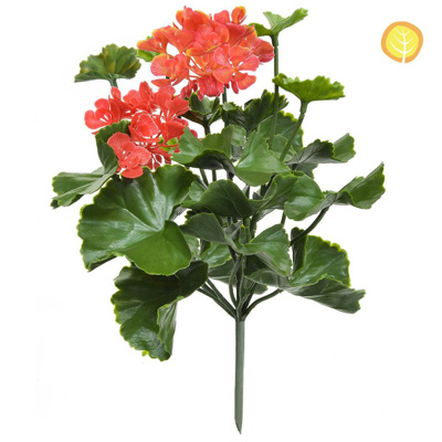 Plants Flowering Geranium Pink UVSILX
