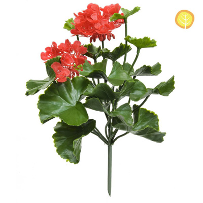 Plants Flowering Geranium Red UVSILX