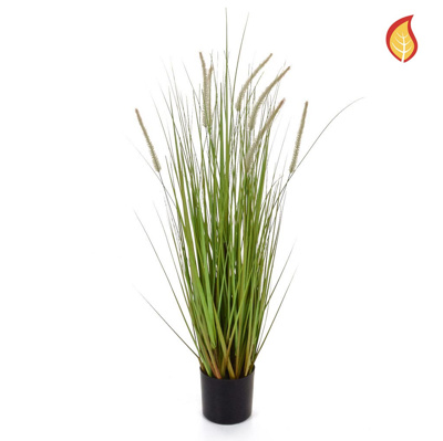 Grass Dogtail Grass B with pot 90cm FR