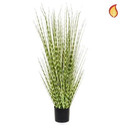 Grass Zebra Grass with Pot 120cm FR