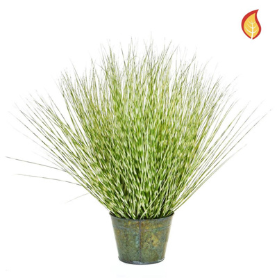 Grass Zebra Grass B in metal pot 86cm FR