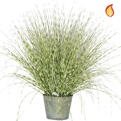 Grass Zebra Grass C in metal pot 114cm FR