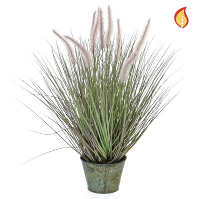 Grass Dogtail Grass with metal pot 58cm FR