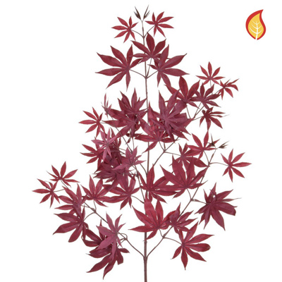 Foliage Maple Burgundy 70cm FR