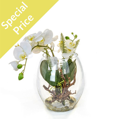 PP Glass Orchid White x3 YA 28cm