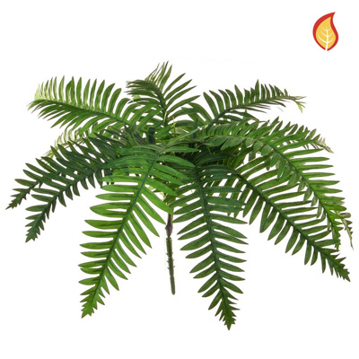 Plants Base Fern River Green SF 12lvs 45cm FR