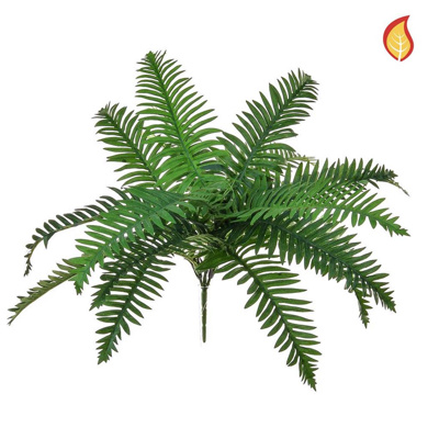 Plants Base Fern River Green SF 18lvs 70cm FR